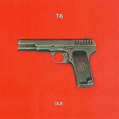 T6 - Topic