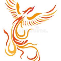 Trainer Phoenix Youtube