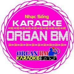 Karaoke OrganBM