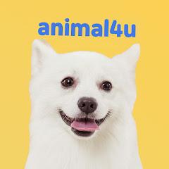 KBS동물티비 : 애니멀포유 animal4u