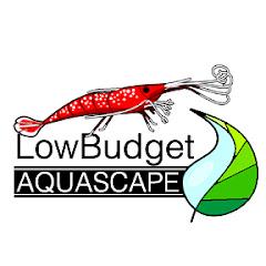 LowBudget Aquascape