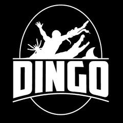 Dingo Dinkelman
