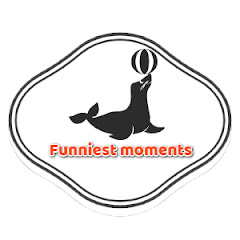 Funniest Moments