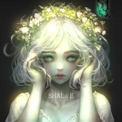 샬이 Shal.E
