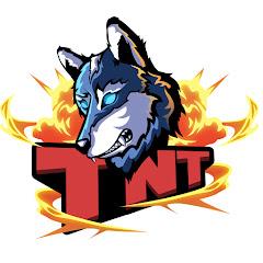 TNT HOUSE