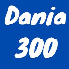 Даня 300