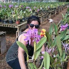 Orquídeas com a Noca