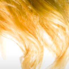 Every Haircolor