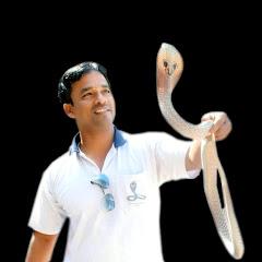 Kamal Choudhary Snake Rescue Team bilaspur