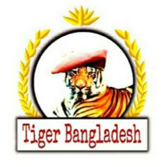 Tiger Bangladesh