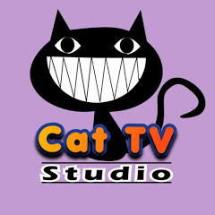Cat TV Studio