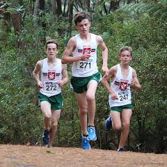 Westlake Distance Running