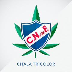Chala Tricolor