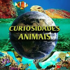 Curiosidades Animais