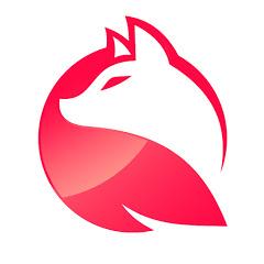 아나여우 ANN-FOX