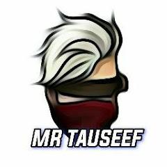 Mr Tauseef