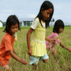 Farm Life Philippines フィリピン農園だよりサブ