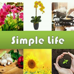 Shra Raji's Simple Life
