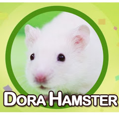 DORA HAMSTER
