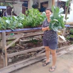 แม่บี ปลูกผัก