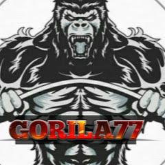 GORILA 77