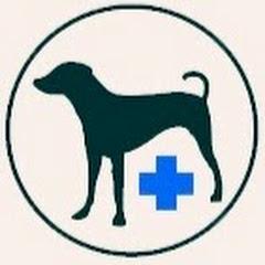 Советы Ветеринара