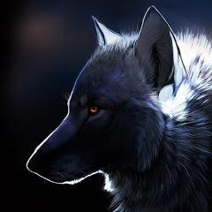 Чёрный Волк Мотивация