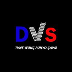DVS SOTING