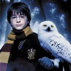 всё о Гарри Поттере