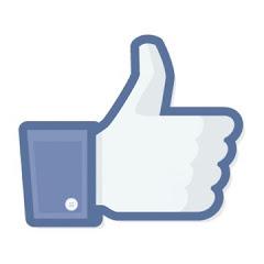Facebook동영상