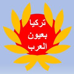 تركيا بعيون العرب