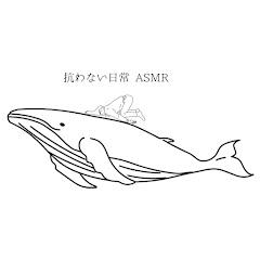 抗わない日常 ASMR /マコ