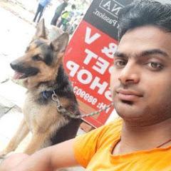 A&V pet shop