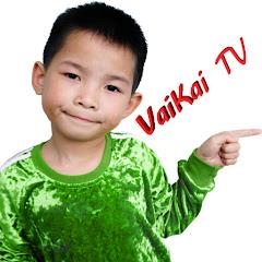 VaiKai TV