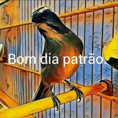 Pássaros e amor Eliezio Alves