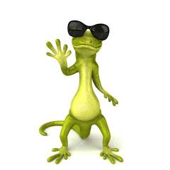 Gecko walks