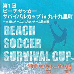 ビーチサッカーサバイバルカップ