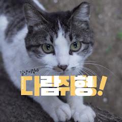 길고양이 집사 다람쥐형