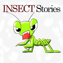 Insect Stories