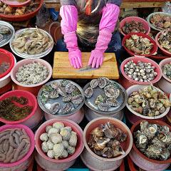 어시장 Fish Market TV