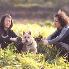 숨비재제주농부 Jeju Farmr