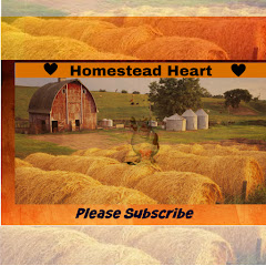 HOMESTEAD HEART
