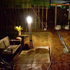 สวนผักหลังบ้าน