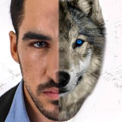 Almog Wolf