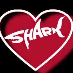 Мы - акулы