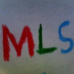 The_MLS_Team