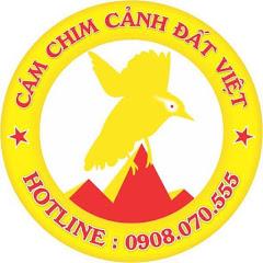 Cám Chim Đất Việt