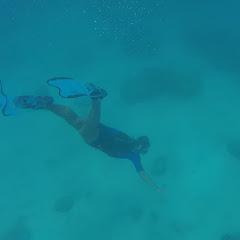 snorkeling in caledonia