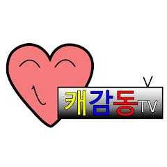캐감동TV