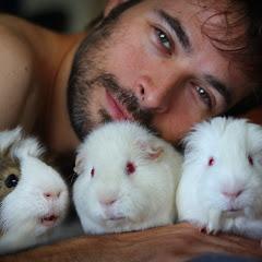 Scotty's Animals